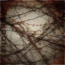 Octave | Abandoned